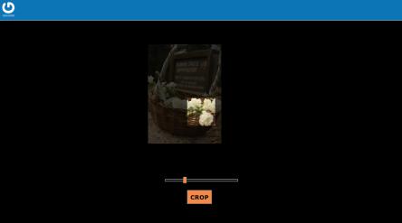 gravatar_screenshot_cropper.png